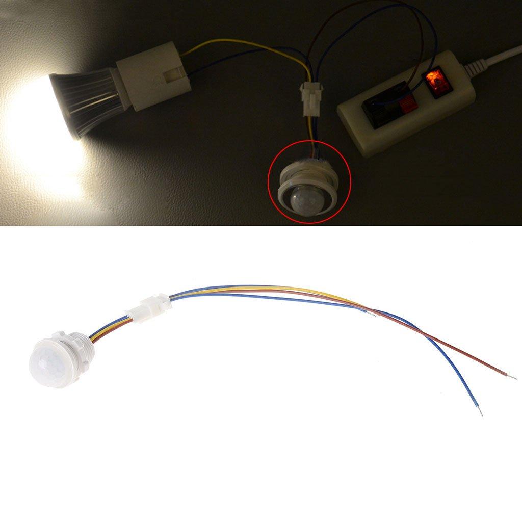 25 mm LED PIR Detector Infrarrojo Sensor de movimiento Interruptor W/Tiempo Retardo Ajustable: Amazon.es: Hogar