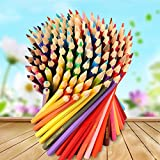 Cenitouch® - 120 - Piece Professional Quality Artists Oily Lead Pencils with Rich Pigmentation Non Toxic Wood and Assorted Colors - Soft Core Pencils with vibrant Natural Colors great for Art work for Kids & Adult Coloring Books. Pre sharpened with easy storage cylindrical plastic Box