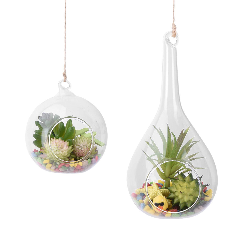 AUTOARK Glass Globe and Teardrop Hanging Succulent Air Plant Terrarium,Glass Vase Hanging Planter,Candle Holder,Home Office Decor Accent,APT-013