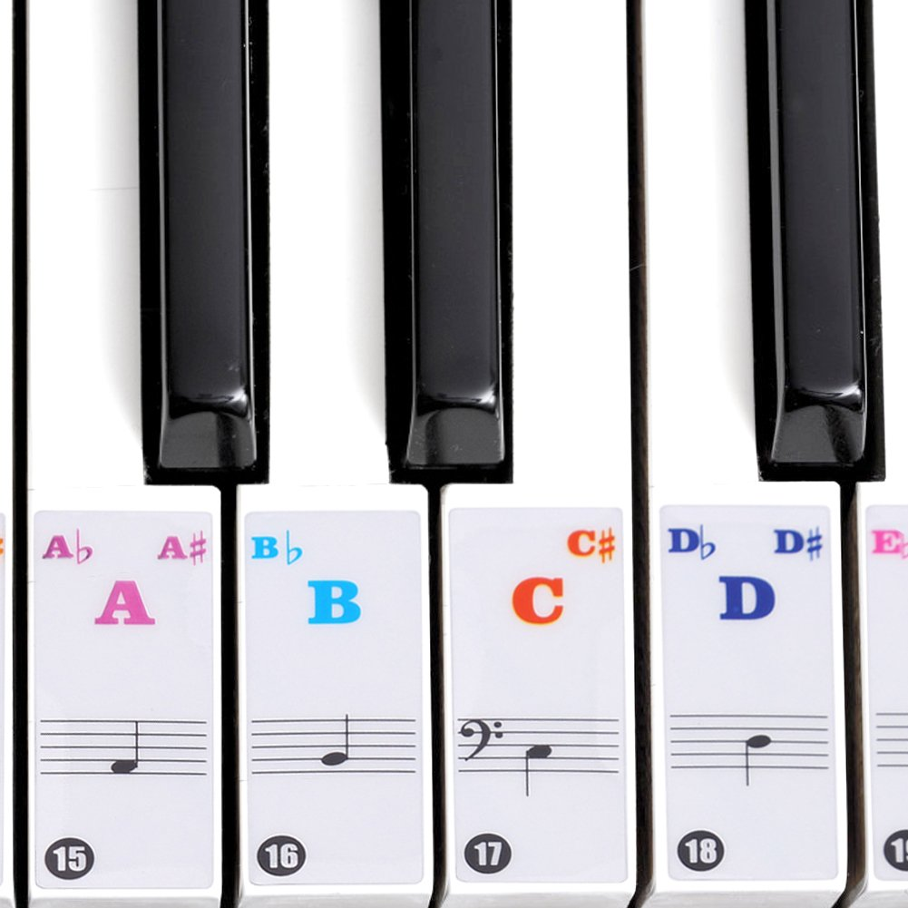 Dilwe Piano Sticker, Removable, Transparent Removable Piano KeyBoard Stickers for 61/88 Key Pianos (Colored) by Dilwe