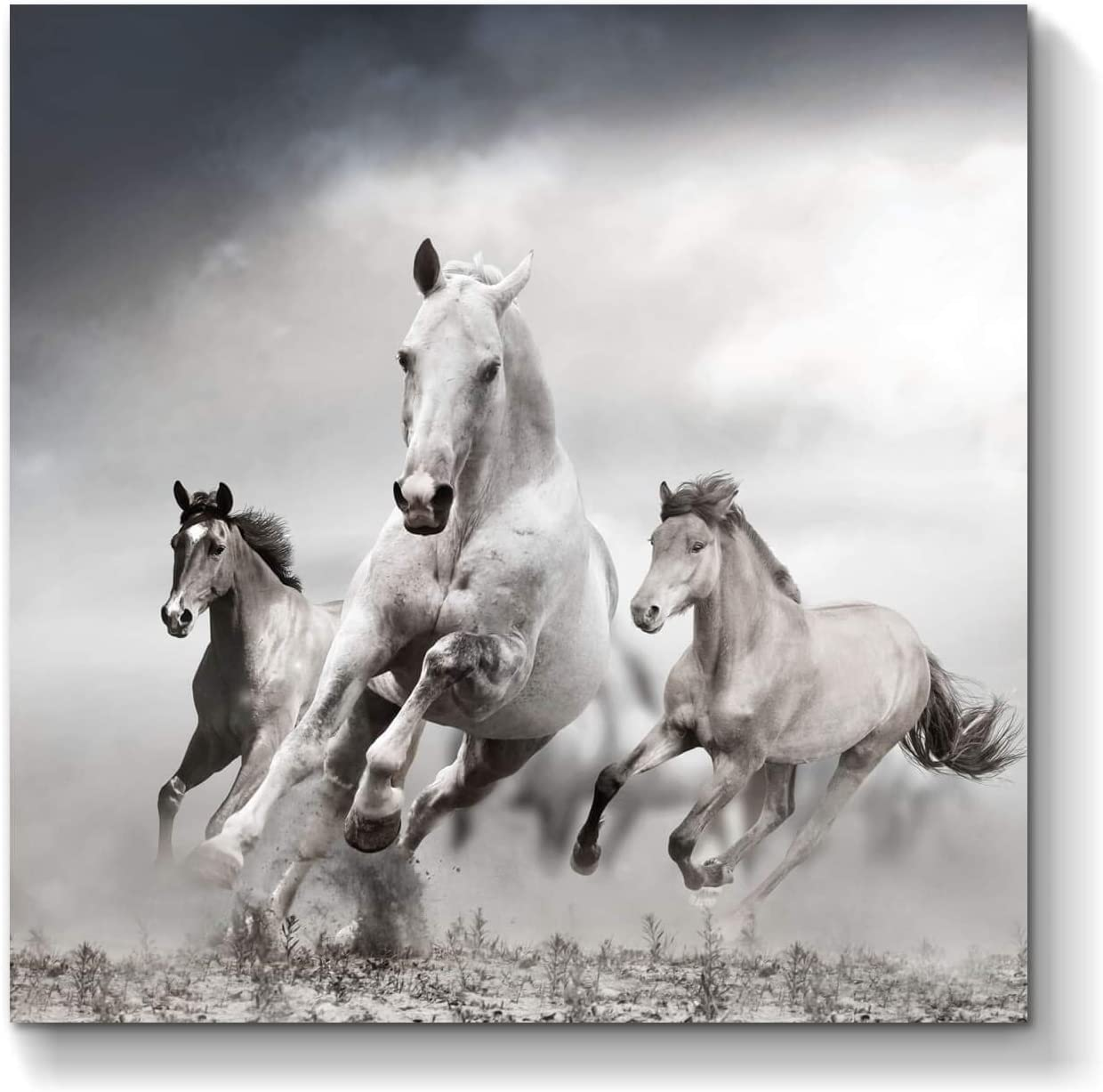 Running Horses Canvas Wall Art: Wild Animals Artwork Print Painting on Canvas for Wall ( 24'' x 24'' x 1 Panel )