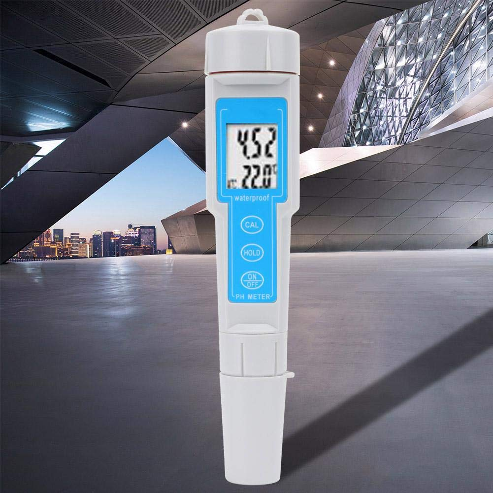 Tree-Free Greetings VB48173 Hockey Fan Artful Traveler Stainless Steel Water Bottle Flames 18-Ounce