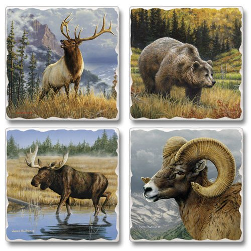Absorbent Stone Coasters set of 4- ()