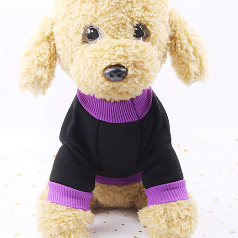 Ropa para Mascotas,Dragon868 Halloween Mascota Cachorro púrpura Sudaderas de Brujas pequeño Medio Mascotas Ropa de Perro: Amazon.es: Ropa y accesorios