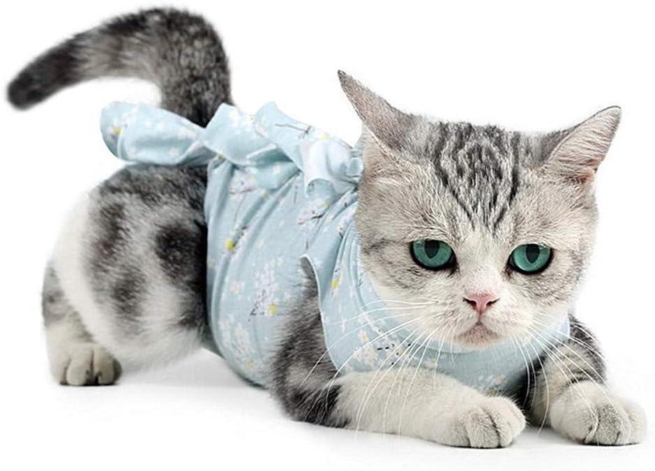 xiamenchangketongmaoyi Pijamas para Perros Pequeños Ropa para Gatos Pequeños Perro quirúrgico Chaleco Ropa de Gato Solo para Gatos Blue,M: Amazon.es: Hogar