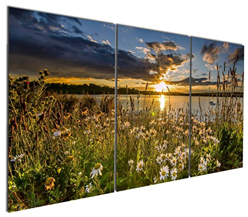 24' Daisy (Gardenia Art - Daisy Beside Lake Canvas Wall Art Paintings Sunset Landscape Abstract Artwork for Home and Office Decoration, 16X24'' Per Piece, Unframed)