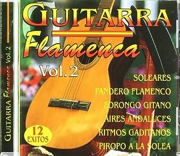 Guitarra Flamenca Vol 2: Guitarra Flamenca: Amazon.es: Música