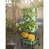 Watex Mobile Green Wall- Double Frame (Spring Bouquet)