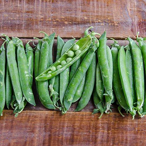 (Green Arrow Pea Garden Seeds - 1 Lb - Non-GMO, Heirloom Vegetable Gardening & Micro Pea Shoots)