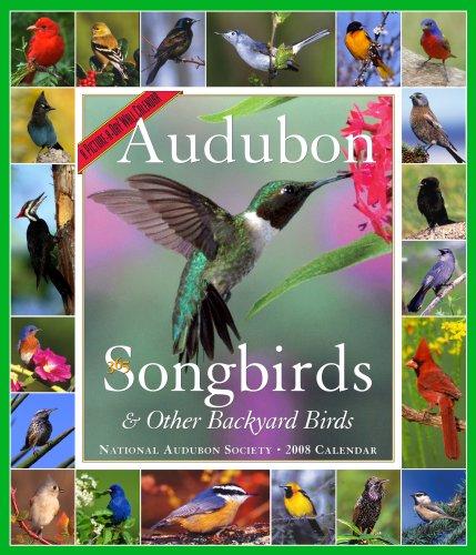 (Audubon 365 Songbirds & Other Backyard Birds Calendar 2008 (Picture-A-Day Wall Calendars))