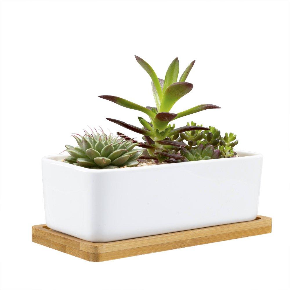 Mkono Rectangular Succulent Planter with Bamboo Base White Ceramic Plant Pot with Drainage,6 1/2 Inch