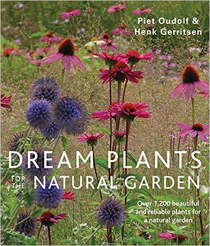 Book's Cover of Dream Plants for the Natural Garden (Anglais) Broché – 3 octobre 2013