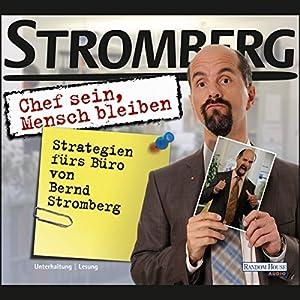 Chef sein, Mensch bleiben. Strategien fürs Büro von Bernd Stromberg Hörbuch