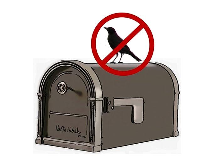 Amazon.com: Buzón Post Finial Kit con bird-deter ®, FINBL1 ...