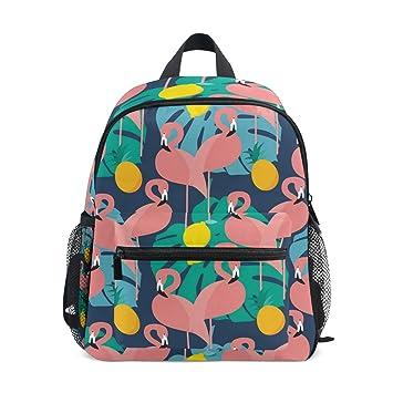 Mochilas para niños, diseño de flamencos rosas en azul oscuro, mochila escolar para niños y niñas: Amazon.es: Hogar