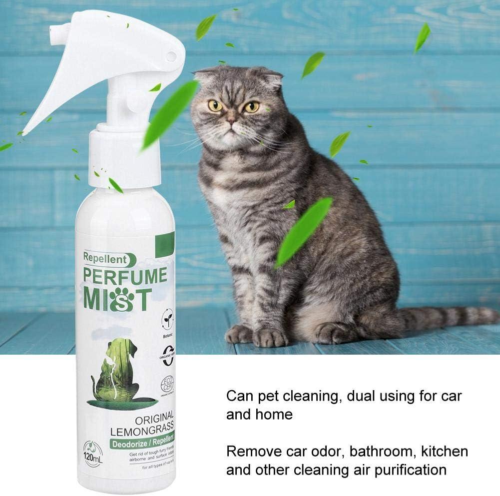 Sprays de esterilización desodorizante para Mascotas, Spray para refrescar Perros, Ayuda a Las Mascotas antibacterianas a desodorizar eficazmente Perros y Gatos (120 ml): Amazon.es: Productos para mascotas