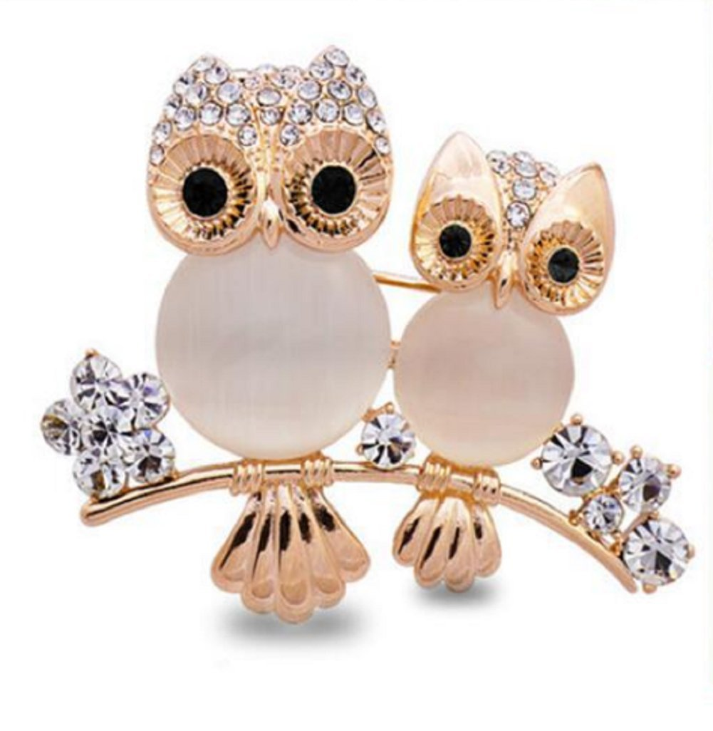 Daisy Jewelry Vintage Good Luck Owl Brooches And Pins Rhinestone Cute Animal Brooch For womens B07CRCW81G_US