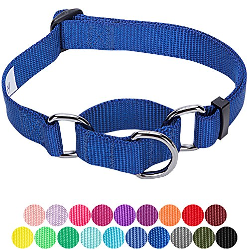 Blueberry Pet 19 Colors Safety Training Martingale Dog Collar, Royal Blue, X-Small, Heavy Duty Nylon Adjustable Collars for Dogs (X-small Collar Pet)