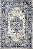 2041 Distressed Ivory 5 x 7 Area Rug Carpet Large New Review