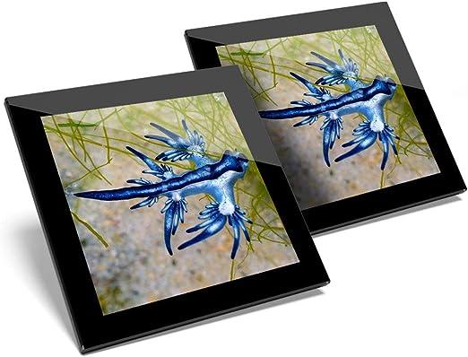 Impresionante juego de 2 posavasos de cristal, diseño de dragón azul glaucus Atlanticus Sea Slug brillante calidad posavasos/protección de mesa para cualquier tipo de mesa #16008: Amazon.es: Hogar