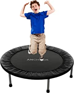 ANCHEER Mini Fitness Trampoline for Adults and Kids, Max Load 220lbs Rebounder Trampoline for Indoor Garden Workout Cardio Training