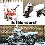 UBEGOOD Motorcycle Cover Waterproof, All Weather
