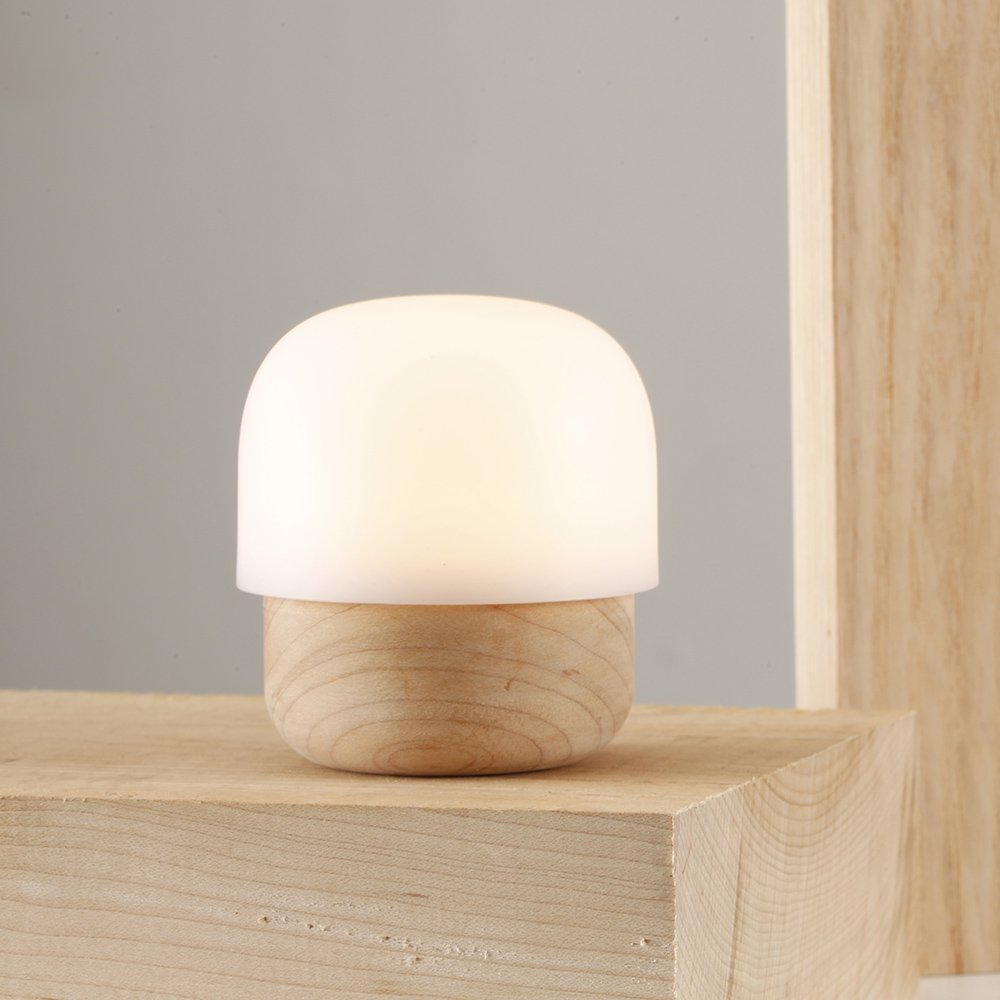 TAKIESO Mini Mushroom Light D2 ZIISTLE, Night Light for Kids in The Bedroom, Mini-Size Portable, Built-in LED Beads Close to Nature Light (Maple Wood & Anti-Allergy PC). by TAKIESO (Image #2)