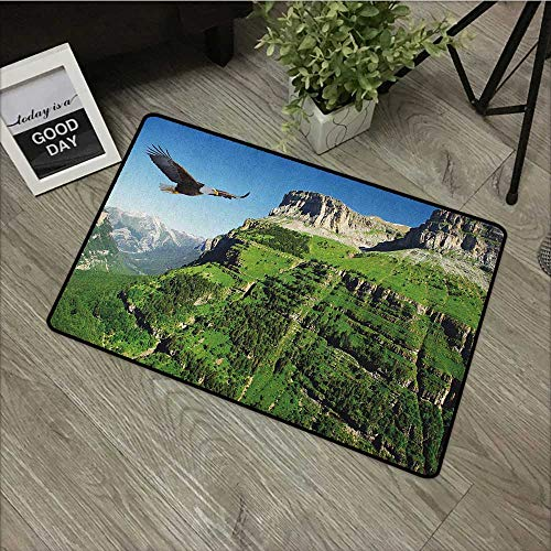 Square door mat W16 x L24 INCH Eagle,Wild Majestic Bird Flying Great Landscapes Green Mountains Forest Nature Image, Green Blue Black Natural dye printing to protect your baby's skin Non-slip Door Mat