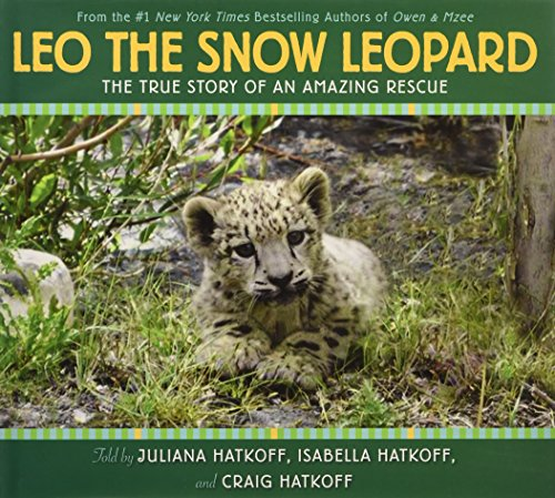 Leo the Snow Leopard -