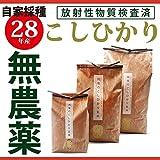 28年産 千葉県産 無農薬・無化学肥料 コシヒカリ玄米 10kg