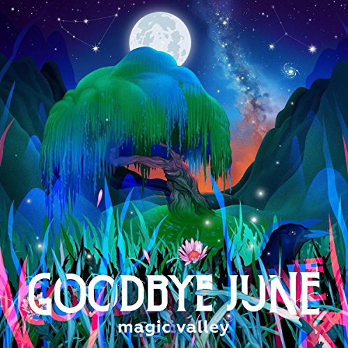 (Magic Valley)