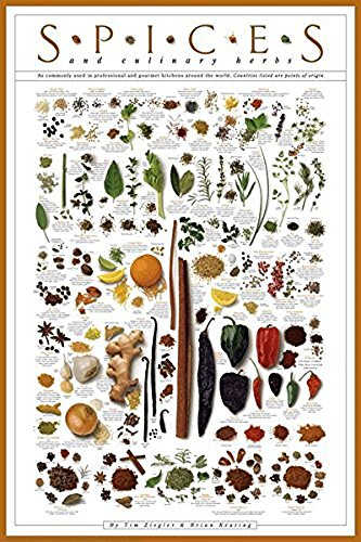 er Print Culinary Herbs 24x36 (Laminated Poster Art)