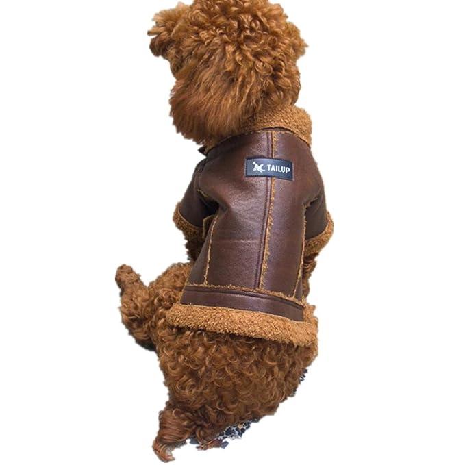 RETUROM Ropa para Mascotas, Moda Cuero Cremallera Chaqueta Abrigo para Perro Mascota: Amazon.es: Ropa y accesorios