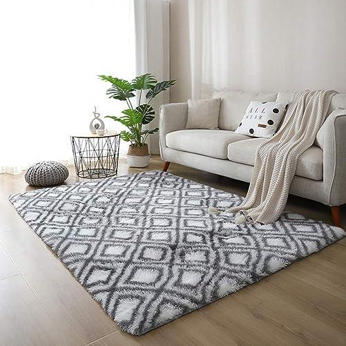 Eanpet Soft Decortive Area Rug 5'x7'Multi Color Non-silp Shag Carpet