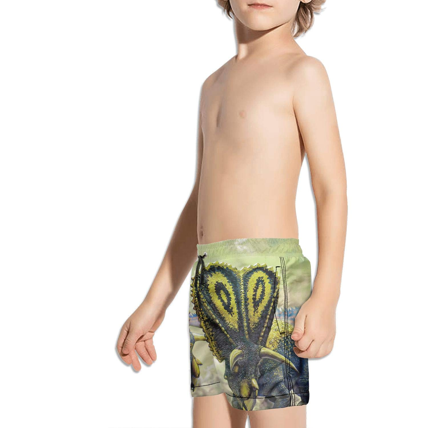 HONGMING Boys Swim Trunk Colorful Band Color Guard Quick Dry Beach Board Shorts