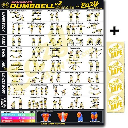 Mancuernas ejercicio entrenamiento Banner Póster grande 51 x 73 cm tren Endurance, tono, construir fuerza & Músculo Gimnasio en casa gráfico, ...