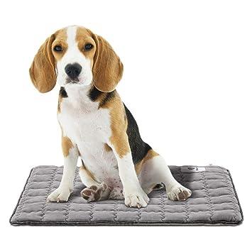 F-dujin Almohadilla para Mascotas Carbón Activado Inhalación Fotocatalítica Desinfección Desodorante Eliminación De Olores Antibacterial