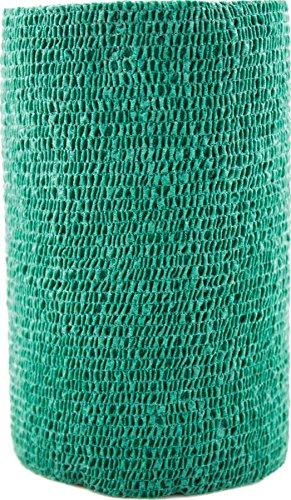3m Dog Treats (3M 722552 VETRAP Bandaging Tape Bulk Hunter Green, 4