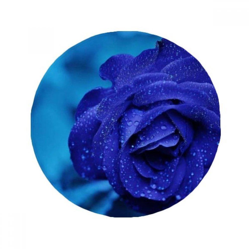 60X60cm DIYthinker Dark bluee pinks Flowers Anti-Slip Floor Pet Mat Round Bathroom Living Room Kitchen Door 60 50Cm Gift