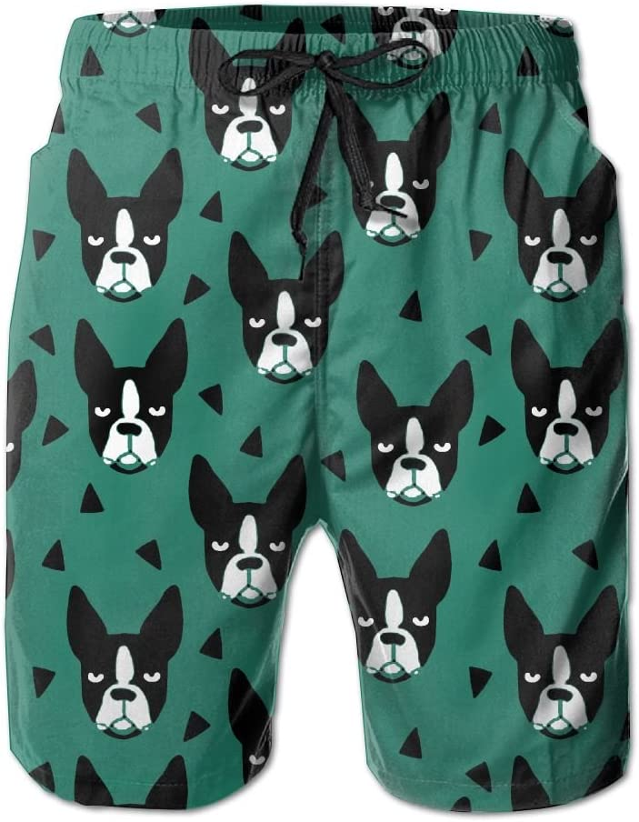 JIW Iaa Cute Boston Terrier Mens Funny Summer Beach Pants Breathable Swim Trunks Board Shorts