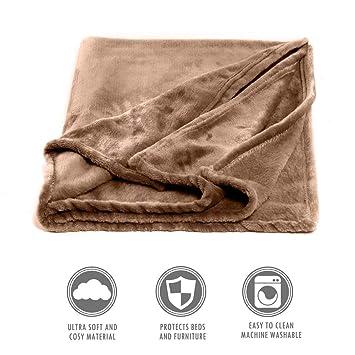 UnvfRg - Funda para Cama de Perro, diseño de Camello de Felpa: Amazon.es: Productos para mascotas