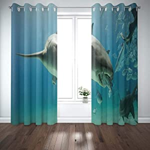 Shorping 52X84 Inch 3D Window Curtains, Privacy Window Curtain Time to Eat The Nurse Shark BiBahamas Window Blackout Curtains for Bedroom,2 Pc