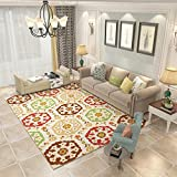 Area Rugs for Living Room Decorative Modern Shaggy Rugs...