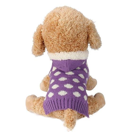 Ropa para Mascotas,Dragon868 Invierno Caliente Sudaderas Ropa de suéter para Perros pequeños Mascotas: Amazon.es: Ropa y accesorios