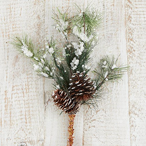 Mountain Pinecone (Group of 4 Snowy Rocky Mountain Pine and Pinecone Sprays)