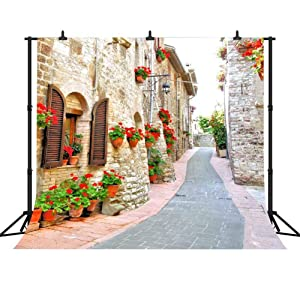 FHZON 10x10ft Italy Backdrop Famous European Street Buildings Wedding Photo Background Spring Flowers Stone Path Photography Portrait Background Photo Booth Props LSFH621