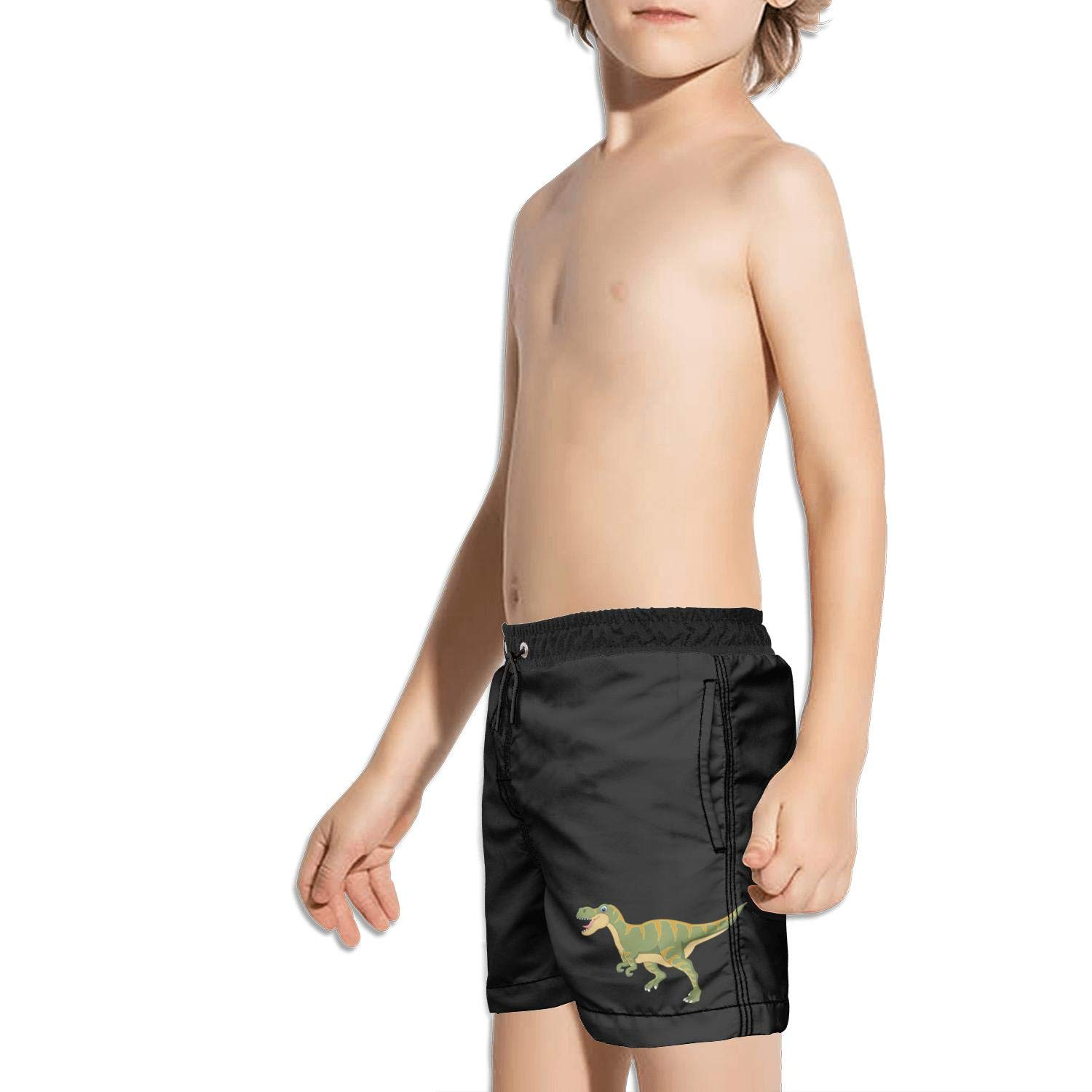 Ouxioaz Boys Swim Trunk Baby Untamed T Rex Dinosaur Beach Board Shorts
