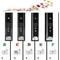 Color piano stickers for 49/54/61/88 key keyboard, suitable for kids and beginners