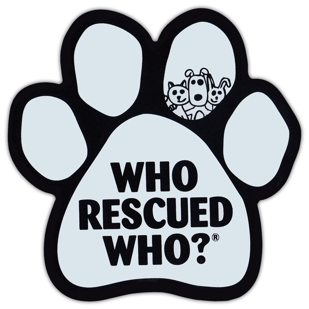 Paw Shaped Car Magnet - Who Rescued Who - White Design - Cars, Trucks, Refrigerators