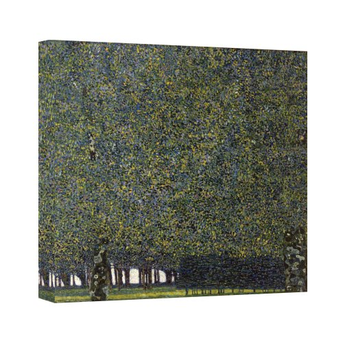 ArtWall The Park Gallery Wrapped Canvas by Gustav Klimt, 24 by 24-Inch ()